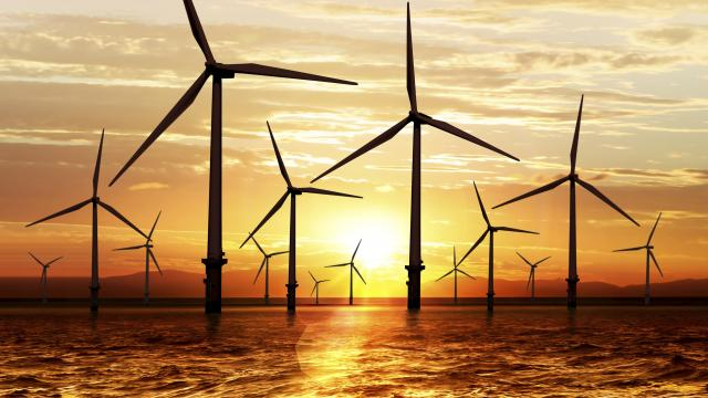 windturbins sunset renewables offshore
