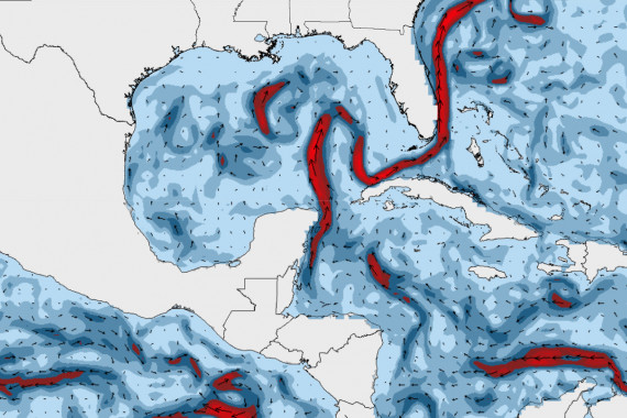 Current forecast Gulf of Mexico