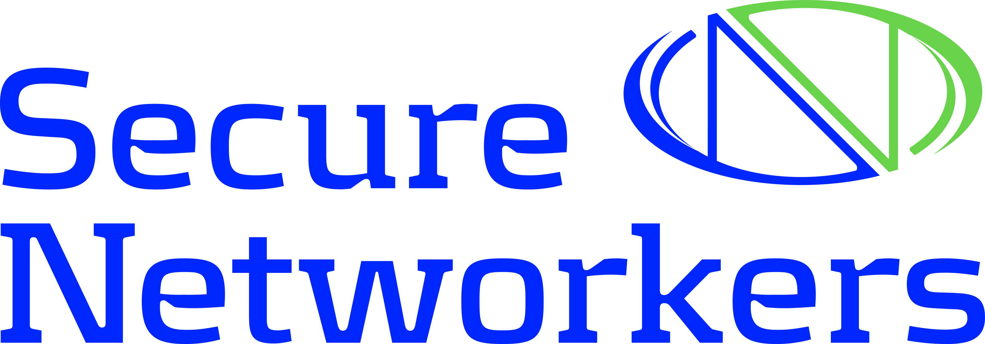 Secure Networks Logo 66cc33